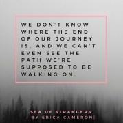 SeaofStrangers-EndOfTheJourney