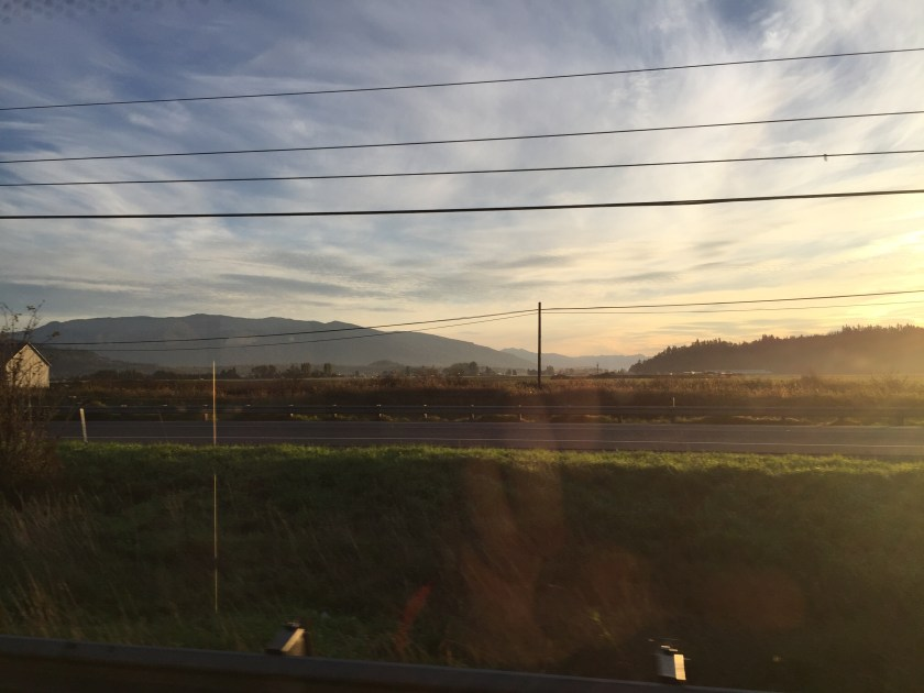 My view of the Skagit Valley out the bus window every morning that it is not raining