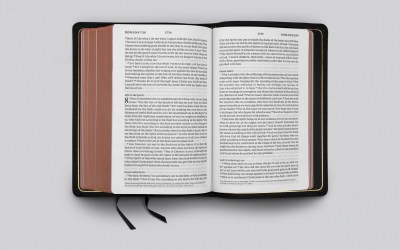 The New ESV Heirloom Single Column Personal Size Bible