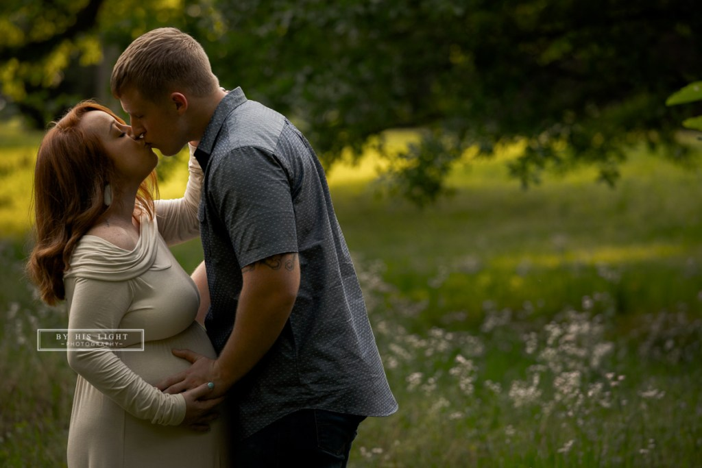 st louis tower grove maternity session