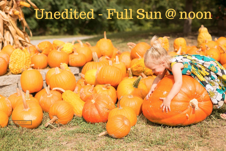 St-Louis-Family-photographer-pumpkin-patch
