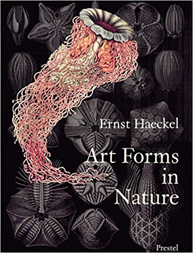 Book: Art Forms in Nature: The Prints of Ernst Haeckel