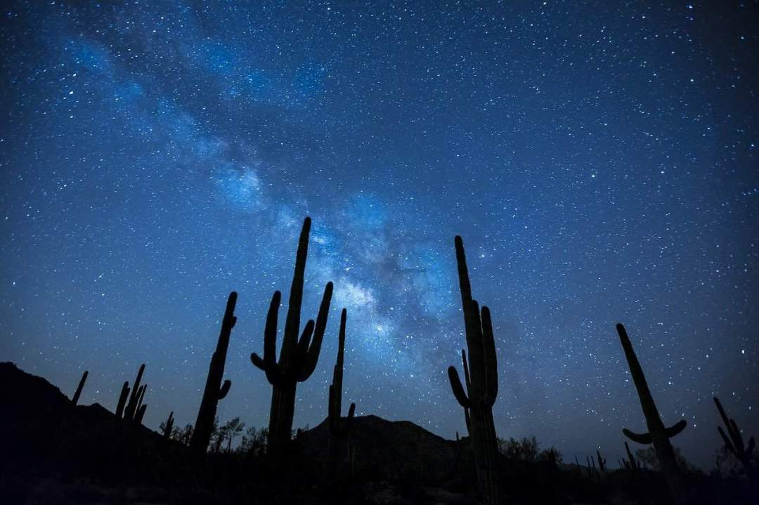 Landscape Desert Milky Way Stars Night Sky Cactus