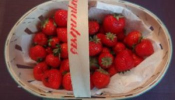 fraises-3