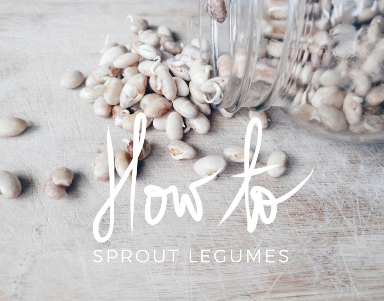 By Manna How To Sprout Legumes