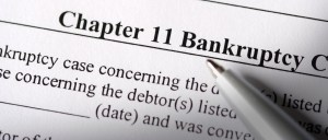 Chapter 11 Bankruptcy Petition
