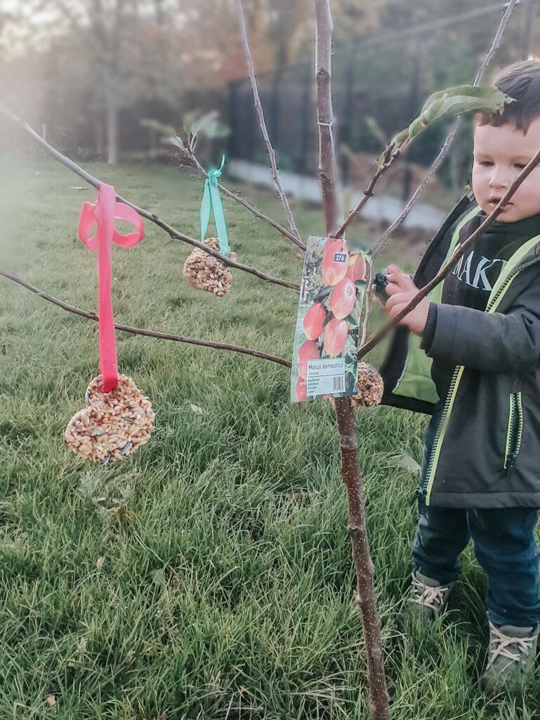 Herfstactiviteit: Vetbollen maken met kinderen