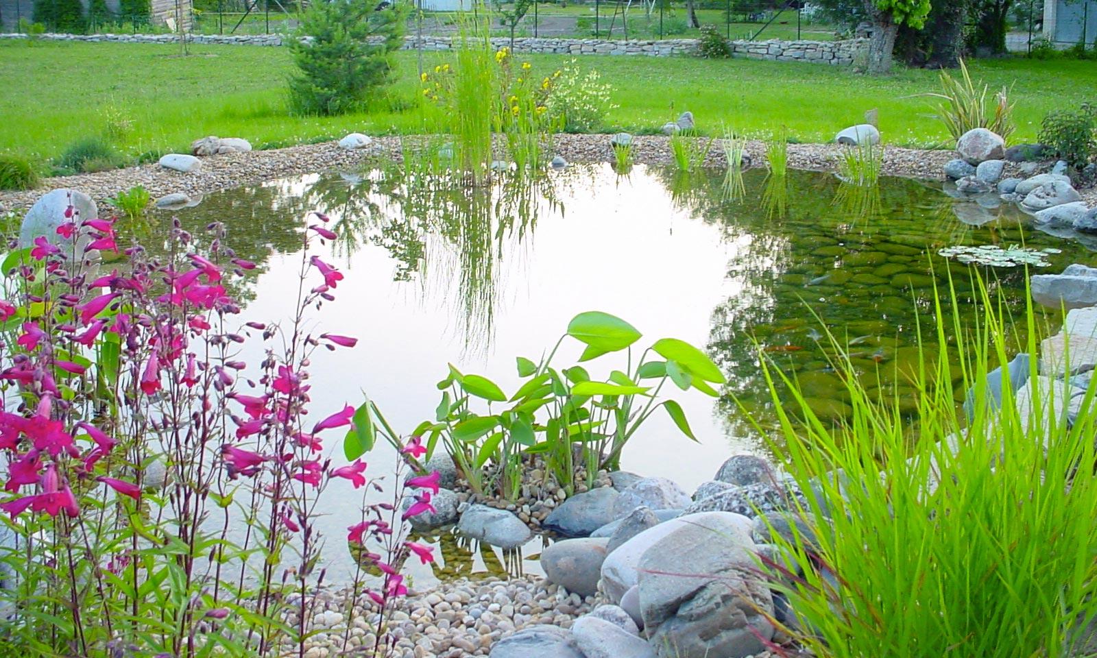 Emejing Bassin De Jardin Villaverde Photos - House Design ...