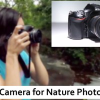 Best Camera for Nature Photography