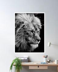 ins-lion