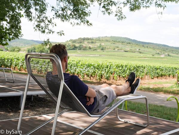 Wijngaarden Bourgogne