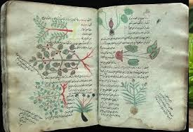 A Commentary on Dioscorides' Materia Medica, ibn-al-baitar