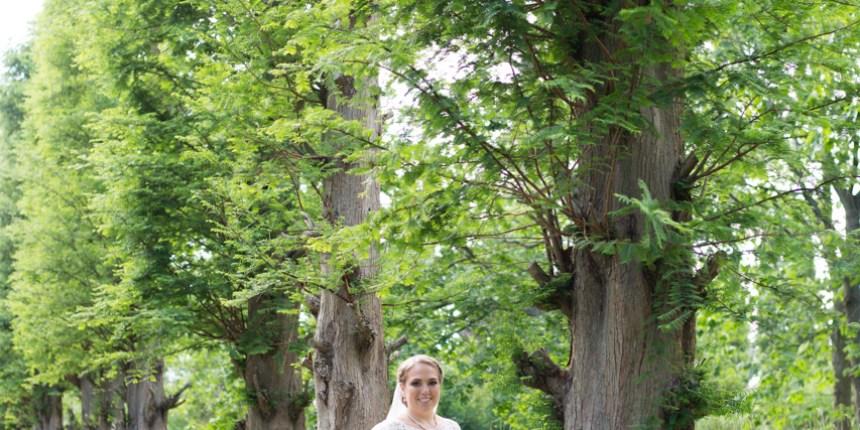 Brud står ved stort træ på allé