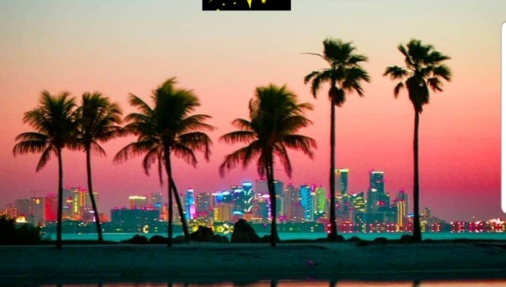 Best Hotels in Miami Florida
