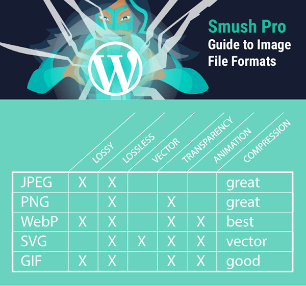 diagram summarizing capabilities for JPEG, SVG, PNG, WebP and GIF.