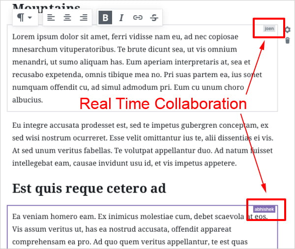 Real Time Collaboration Using Gutenberg.