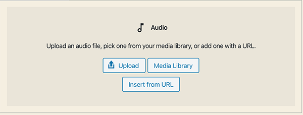 Gutenberg audio player options.