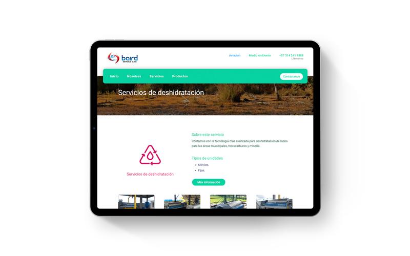 baird service medio ambiente