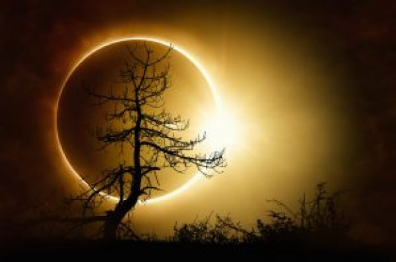 """Writer Tom Hoover Says, """"I Blame the Eclipse."""""""