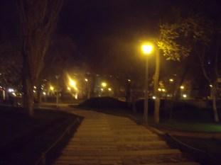 Թերեզի հետ մի քիչ զբոսնեցի սիրահարների այգում, մինչև Արմենը կմիանար