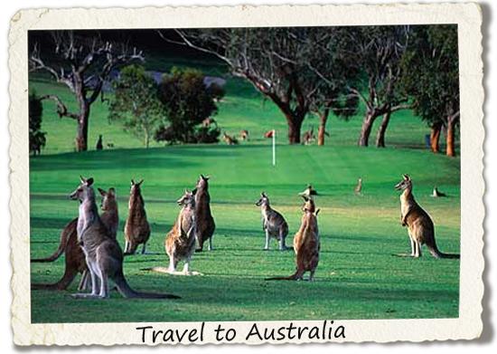 bucket list: travel to australia