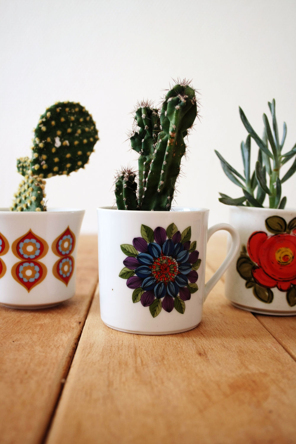 DIY - Teacup cactus planter