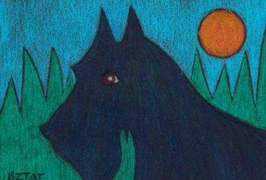Scottish Terrrier drawing