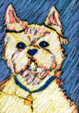 Westie-mixed-media-drawing-BZTAT