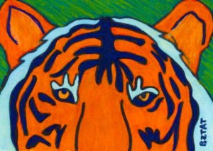 bengal-tiger-drawing
