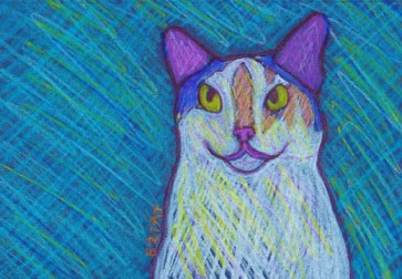 Calico and White Cat Drawing by BZTAT