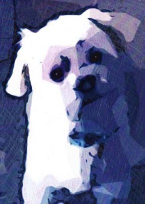 White Dog abstract drawing by BZTAT