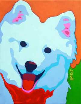 American Eskimo Spitz dog pet portrait