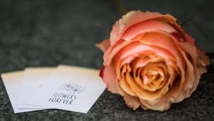 Roos van Flowers Forever