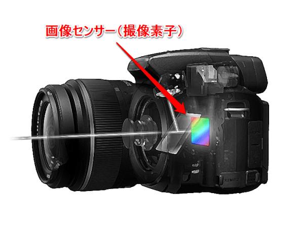 画像センサー(撮像素子)とは?各サイズについて