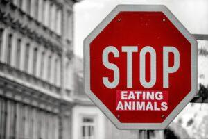 stop manger des animaux