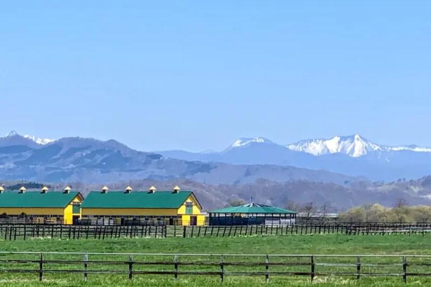 日高の牧場と山
