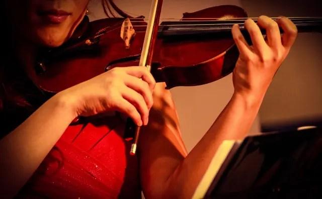 バイオリニスト