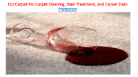 Carpet Cleaning, Stain Treatment, And Carpet Stain ...