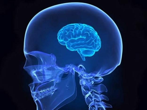 ماہرین نے کہا ہے کہ اگر آپ مسلسل بیٹھے رہتے ہیں تو اس سے دماغی یادداشت کا اہم گوشہ سکڑ سکتا ہے جو یادداشت میں خرابی کی وجہ بھی بن سکتا ہے۔ فوٹو: فائل