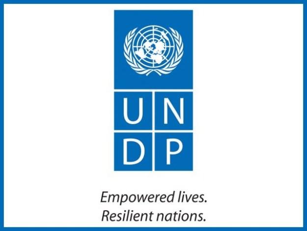 نیشنل ہیومن ڈیولپمنٹ رپورٹ اور یواین ڈی پی پبلی کیشن میں مدد ملے گی۔ فوٹو: نیٹ