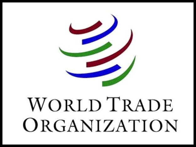 یورپی یونین، چین، بھارت، میکسیکو، کینیڈ اور روس بھی امریکا کے خلاف ڈبلیوٹی او کا دروازہ کھٹکھٹا چکے ہیں۔ فوٹو: فائل