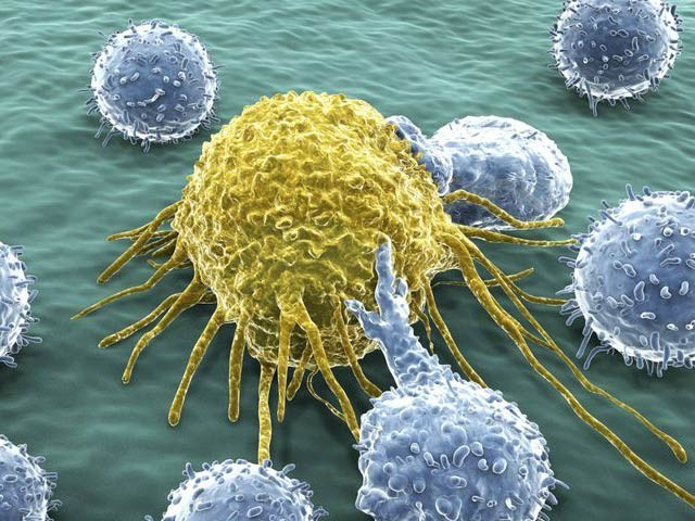 انسانوں میں دریافت شدہ نئے خلیات سے مختلف کینسرکا قلع قمع ممکن