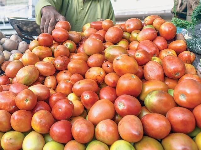 ٹماٹر کی قلت پھر سراٹھانے لگی، ڈیڑھ ماہ میں قیمت دگنی ہوگئی