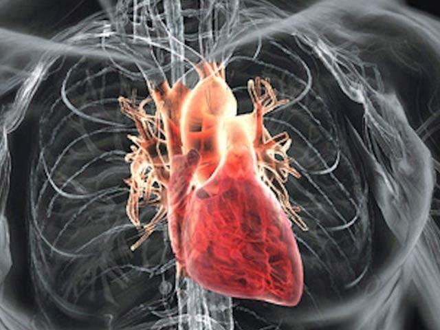 انسانی دل کے انتہائی تفصیلی نقشے سے مؤثر علاج کی راہیں کھلیں گی