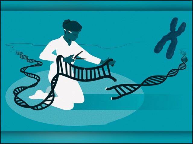 جین ایڈیٹنگ تکنیک ''کرسپر'' ایجاد کرنے والی خواتین کےلیے کیمیا کا نوبل انعام