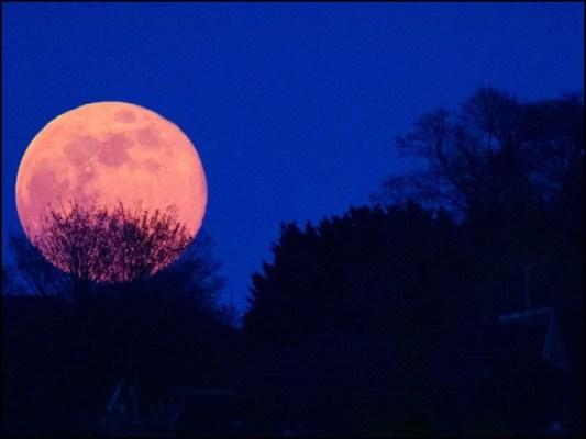 سپر مون دیگر مہینوں میں پورے چاند سے 7 فیصد تک بڑا اور 15 فیصد تک زیادہ روشن ہوتا ہے۔ (فوٹو: انٹرنیٹ)