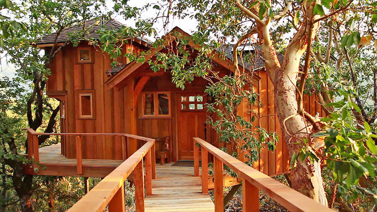 Your Childhood Dream Home The Extreme Treehouses Of