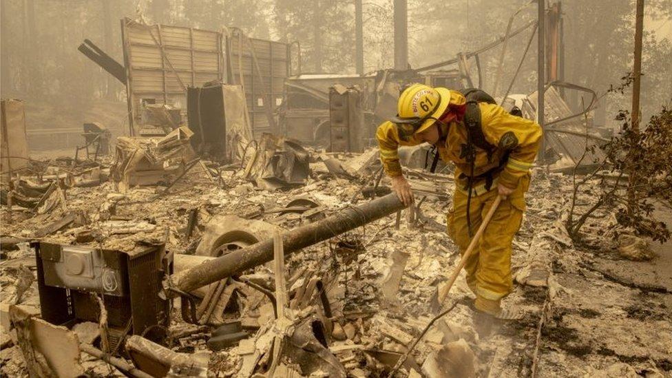 Un bombero examiando un árbol en California, el 12 de septiembre de 2020.