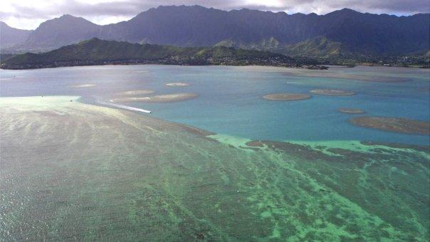Arrecifes de coral en la costa de Oahu, en Hawái.