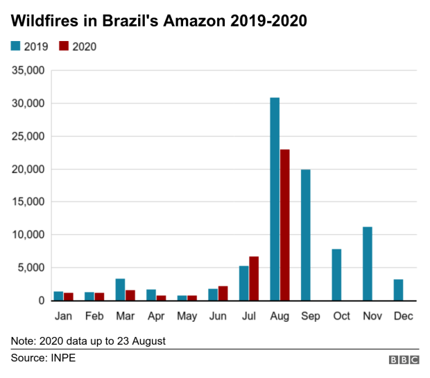 Bar chart showing fires in Brazil up to 23 August